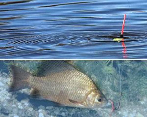 Самодельные снасти для рыбаИгрушки к новому году