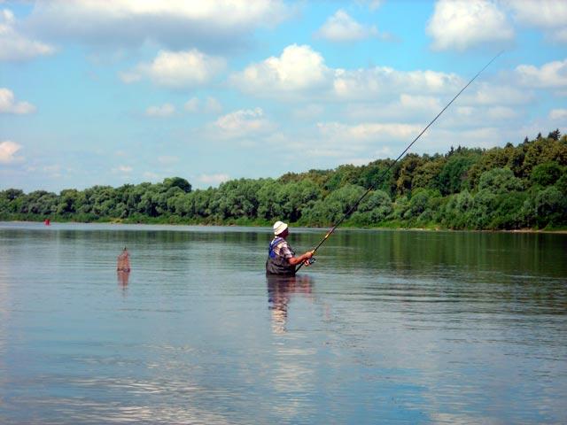 ловля рыб на оке летом