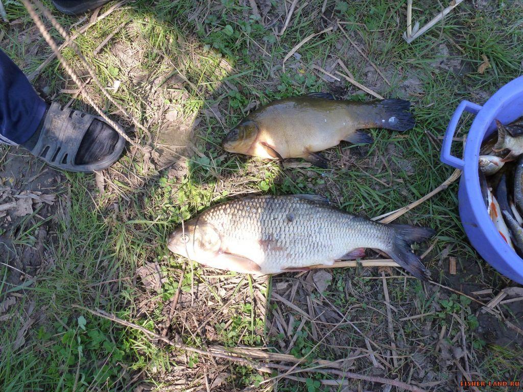 рыбалка на таналыке