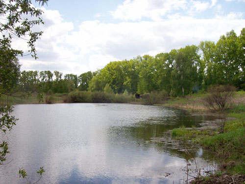 река осиновка рыбалка