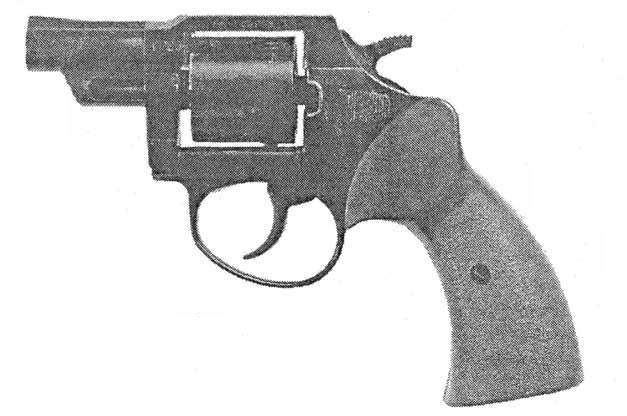 GR-95-Zubr.JPG