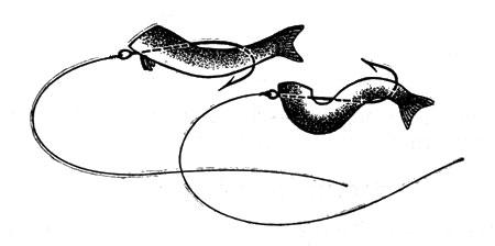 ловля рыбы на кусочек мяса