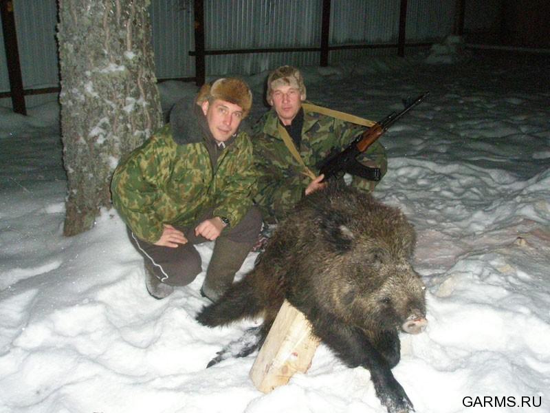 Охота на кабана в охотничьем